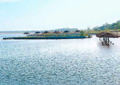 Vista desde el agua - Ecotur Laguna Blanca